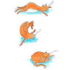 Illustratie Yoga kat